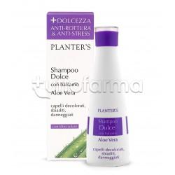 Planter's Shampoo Dolce Aloe Vera Capelli Rovinati 200 ml