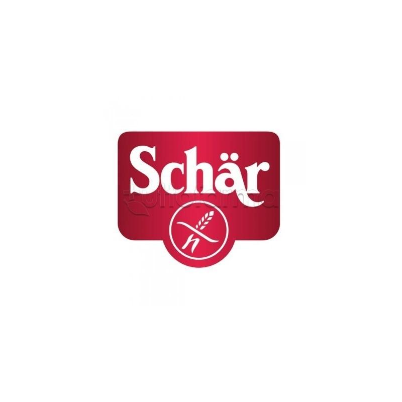 Schar Panini