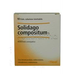 Solidago Compositum Heel Guna 10 Fiale Medicinale Omeopatico 2,2ml