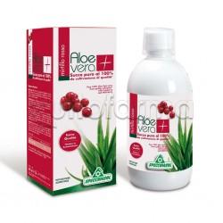 Specchiasol Succo Aloe Vera + con Mirtillo Rosso per Vie Urinarie 1 lt