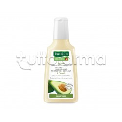 Rausch Shampoo Colorprotettivo All'Avocado per Capelli Tinti 200ml