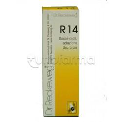 Dr. Reckeweg R14 Gocce Orali Omeopatiche 22ml