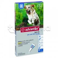 Advantix Antiparassitario per Cani da 25 kg a 40 kg 4 Pipette Spot-On