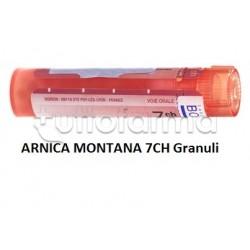 Boiron Arnica Montana 7CH Granuli Omeopatici Tubo da 4gr