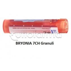 Boiron Bryonia 7CH Granuli Omeopatici Tubo da 4gr