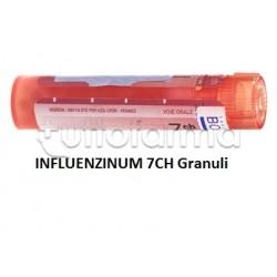 Boiron Influenzinum 7CH Granuli Omeopatici Tubo da 4gr