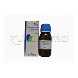 Tilia Tormentosa Gemme Medicinale Omeopatic in gocce da 60 ml