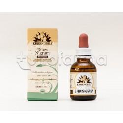 Fitoblasto Ribes Nigrum Integratore drenante 50 ml