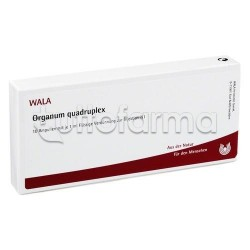 Wala Organum Quadruplex Medicinale Omeopatico 10 Fiale