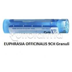 Boiron Euphrasia Officinalis 9CH Granuli Omeopatici Tubo da 4gr