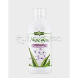 ErbaVita Aloe Vera Puro Succo 100% con Antiossidanti 1000ml