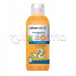 Zuccari Aloe Magnifica Succo Puro 100% Doppia Concentrazione AloeVera2 1000ml