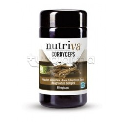 Nutriva Cordyceps 60 Capsule
