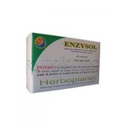 Enzysol 60 Compresse