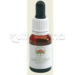 Australian Bush Flower Bottlebrush Gocce 15ml