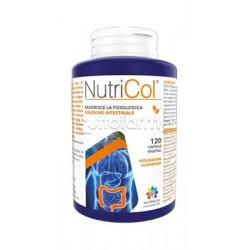 Nutrigea Nutricol 60 Capsule