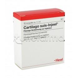 Cartilago Suis Injeel Heel Guna 10 Fiale Medicinale Omeopatico