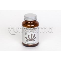 Lithothamnium Calcareum 180 Compresse