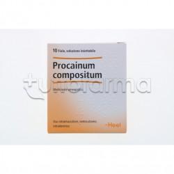 Procainum Compositum Heel Guna 10 Fiale Medicinale Omeopatico 2,2ml