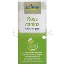 Boiron Rosa Canina Macerato Glicerico 60ml