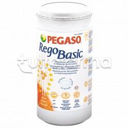 Pegaso Regobasic Polvere con Funzioni Depurative 250gr
