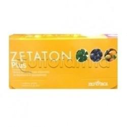 Zetaton Plus Energetico contro Stanchezza e Ricostituente 12 Flaconcini