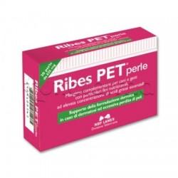 Ribes Pet Integratore Veterinario per Dermatosi per Cani e Gatti 30 Perle