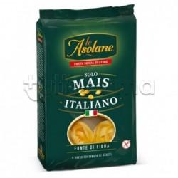 Le Asolane FonteFibra Tagliatelle Senza Glutine 250g