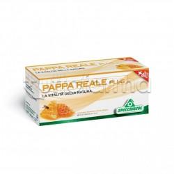 Specchiasol Pappa Reale Plus Integratore con Pappa Reale 12 Flaconcini