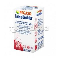 Enterodophilus Integratore con Fermenti Lattici 40 Capsule