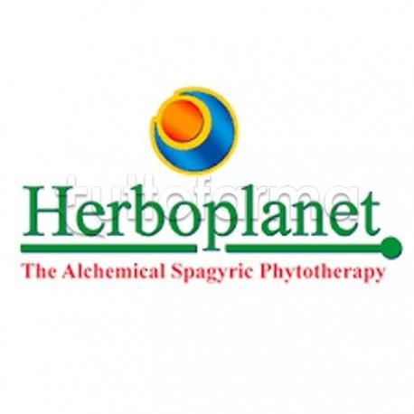 Herboplanet Sire Mag Integratore per Stanchezza e Affaticamento 60 Compresse