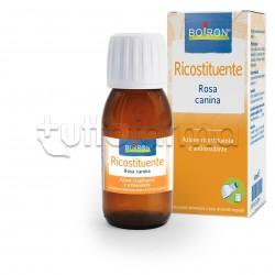 Boiron Rosa Canina Estratto Idroalcolico Ricostituente 60ml