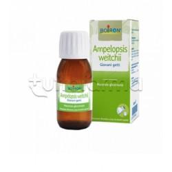 Boiron Ampelopsis Weitchii Macerato Glicerico 60ml