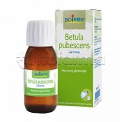 Boiron Betula Pubescens Macerato Glicerico 60ml