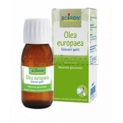 Boiron Olea Europaea Macerato Glicerico Giovani Getti 60ml
