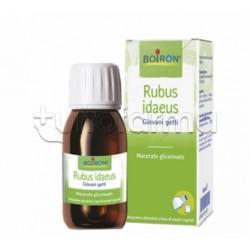 Boiron Rubus Idaeus Macerato Glicerico Giovani Getti 60ml