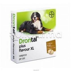 Drontal Multi Aroma Carne XL Farmaco Veterinario Infestazioni Intestinali dei Cani di Grande Taglia 2 Compresse