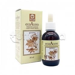 Eco Acero Macerato Glicerico 50ml