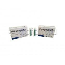 Biogroup Psicophyt Remedy 42B Rimedio Riequilibrante per Stress 4 Tubi di Globuli