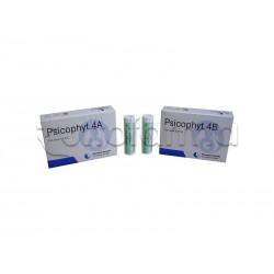 Biogroup Psicophyt Remedy 4B Rimedio Riequilibrante per Stress 4 Tubi di Globuli