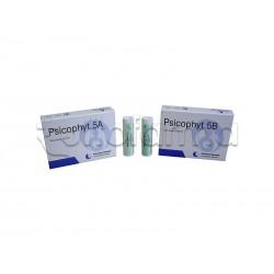 Biogroup Psicophyt Remedy 5A Rimedio Riequilibrante per Stress 4 Tubi di Globuli