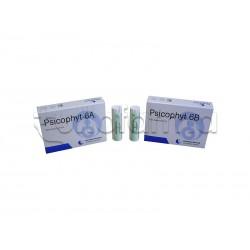 Biogroup Psicophyt Remedy 6A Rimedio Riequilibrante per Stress 4 Tubi di Globuli