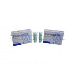 Biogroup Psicophyt Remedy 7B Rimedio Riequilibrante per Stress 4 Tubi di Globuli