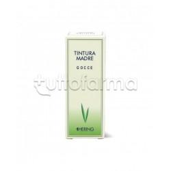 Hering Ribes Nigrum Tintura Madre Omeopatica 125ml