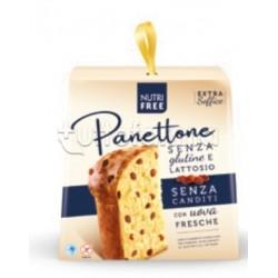 Nutrifree Panettone con Uvetta e Senza Canditi Senza Glutine 600g