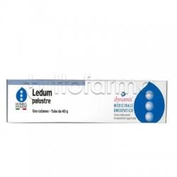 HomeoPharm Ledum Palustre Unguento Omeopatico 40g