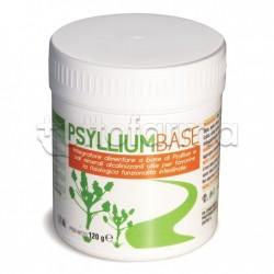 AVD Psyllium Base Integratore per Benessere Intestinale 120g