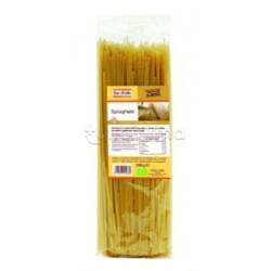 Fior Di Loto Pasta Di Kamut Bianco Spaghetti Di Grano Alimento Biologico 500g