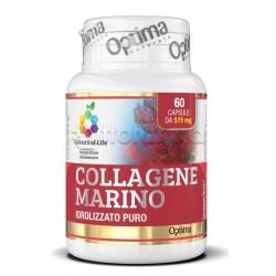 Collagene Marino Idrolizzato Puro per la Pelle