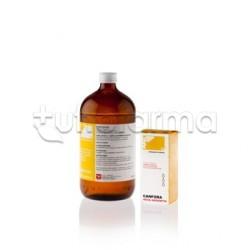 Canfora Nova Argentia 10 % Soluzione Idroalcolica 100 ml